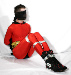 Robin_Red_06.jpg