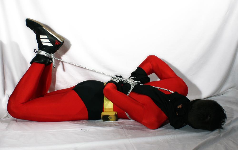 Robin_Red_02.jpg
