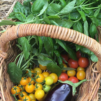 Dulwich summer produce.jpg