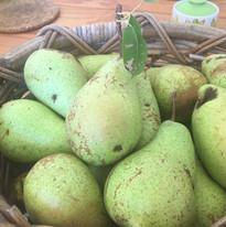 pears from the baba yaga tree.jpg