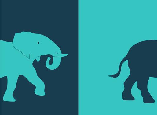 Erfolg XXL: Schwieriges Marktumfeld? Der Elefant macht's Ihnen mal vor ...