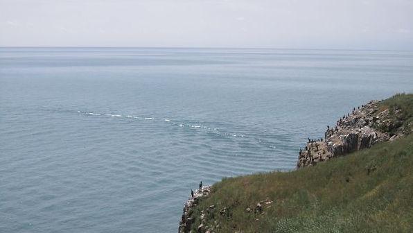 苗圃鎮洋單車助學行2010 –『青海湖之旅』043.jpg