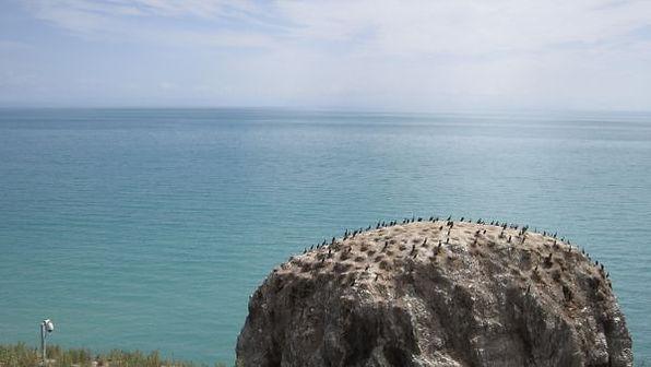 苗圃鎮洋單車助學行2010 –『青海湖之旅』044.jpg