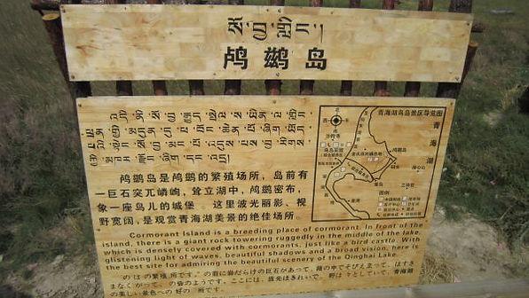苗圃鎮洋單車助學行2010 –『青海湖之旅』042.jpg