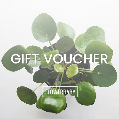 FLOWERBABY GIFT VOUCHER