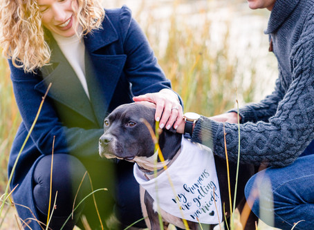Rachel and Mike's Shelburne Engagement Session