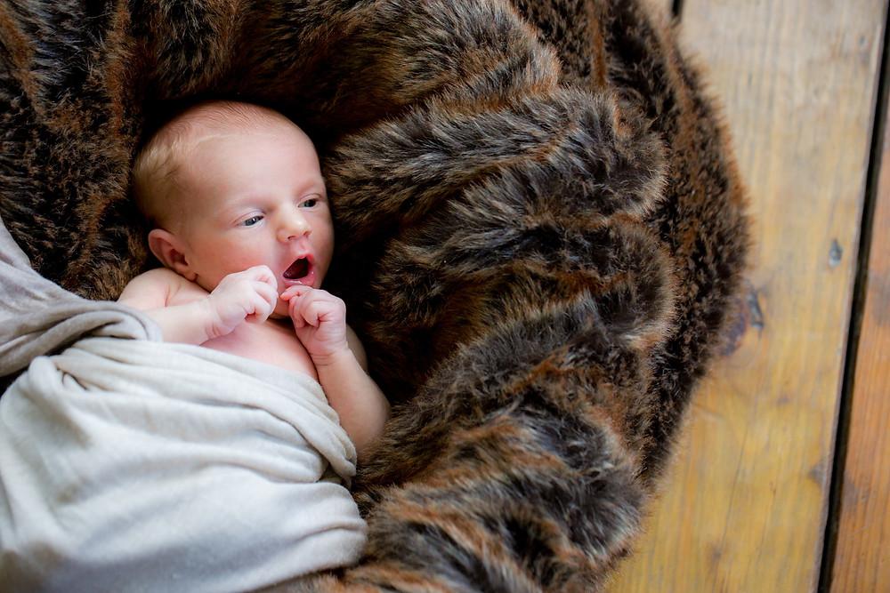 Vermont baby