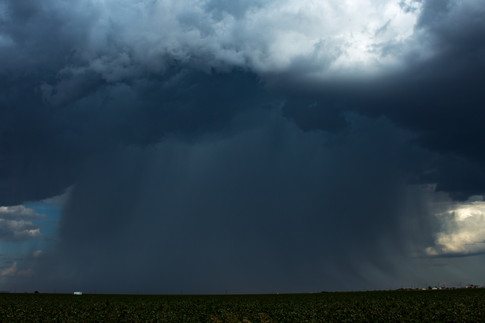 Cotton Field Microburst