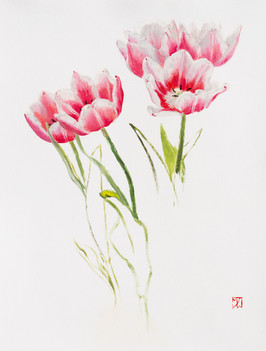 """Mary Jane Ward 'Bicolored Tulips' Oil on paper. 14"""" x 11"""" 2019  $700"""