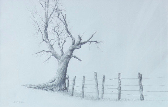 """Will Reader """"Fenceline"""", 2020 11 1/2 x 17 3/4 inches  Sold"""