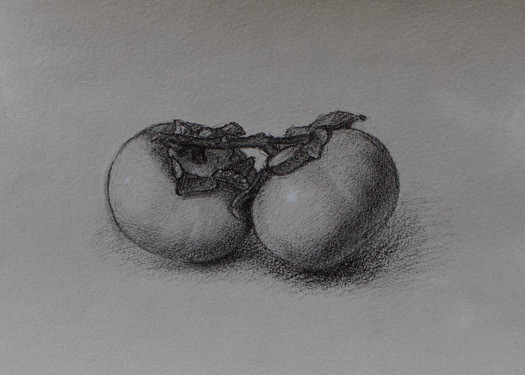 """Mary Jane Ward """"Two Persimmons"""", 2018 Charcoal, graphite, chalk, ink wash on paper 7 x 9 inches  $450"""