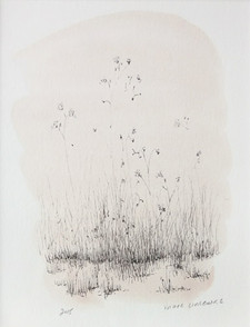 Marc Lincewicz 'Along the Park Trail', 2015 Pen and ink on paper 4 3/4 x 3 1/2 inches $700