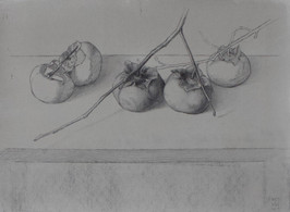 """Mary Jane Ward 'Five Persimmons' Charcoal, graphite, ink wash on paper. 11"""" x 15"""" 2019  $760"""