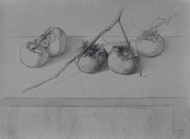 "Mary Jane Ward 'Five Persimmons' Charcoal, graphite, ink wash on paper. 11"" x 15"" 2019  $760"