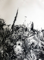 Rod Bouc 'Girverny Dahlias' Charcoal on paper 30 x 22 inches SOLD
