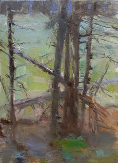 Neil Riley 'Edge of Wet Meadow' Oil on panel 9 3/4 x 7 inches  $1,100