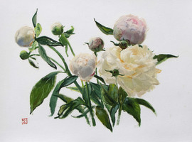 "Mary Jane Ward 'Tracy's Peonies (Pink and White Peonies)' Oil on paper. 11"" x 14"" 2019  $700"