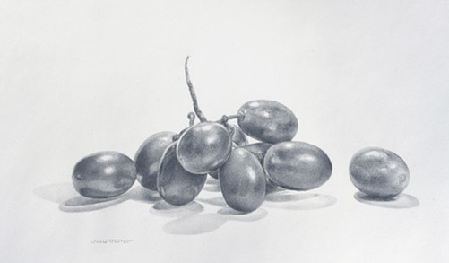 Lowell Tolstedt 'Grapes/Shadows', 2015 Silverpoint and platinum point 4 3/4 x 7 7/8 inches  Sold