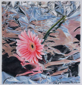 Lowell Tolstedt 'Gerbera with Reflections', 2008 Colored pencil 9 1/2 x 8 7/8 inches  Sold