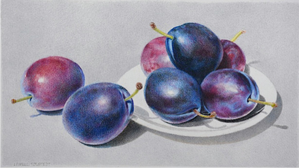 Lowell Tolstedt 'Plate with Plums', 2017 Colored pencil 4 5/8 x 8 3/8 inches  P.O.R.