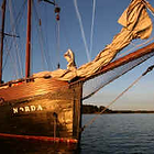 Cabin or bunk booking for sailing holidays on board the Norda for single travellers