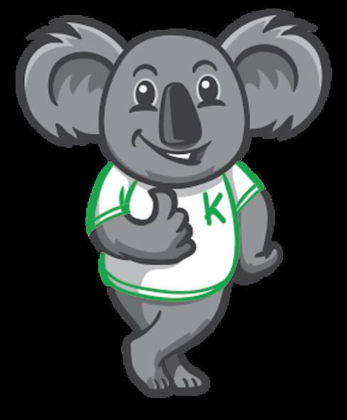 Koala Standing.png