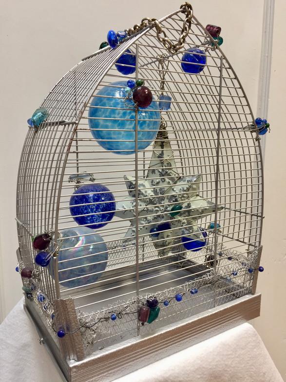 Galaxy Caged