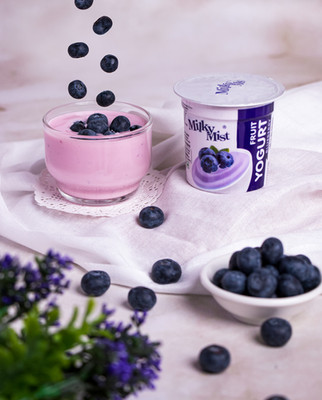 BlueBerry_Yogurt-22-Edit.jpg