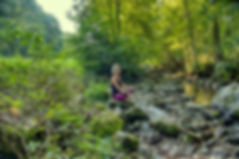 Waldwellness Schwarzwald Wadbaden