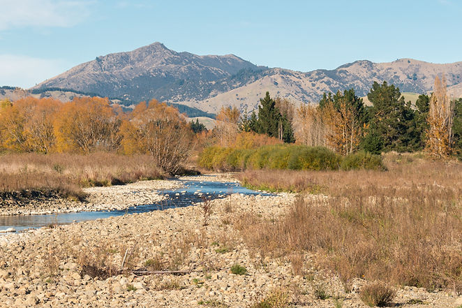 Taylor River in Autumn.jpg