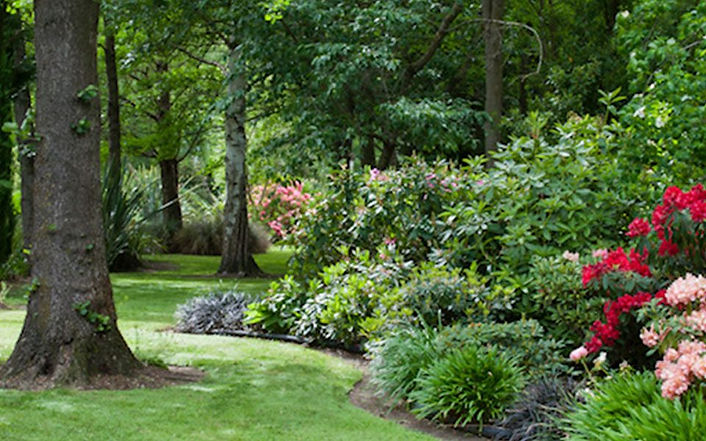 Coldstream Garden.jpg
