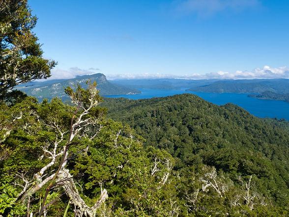 Lake Waikaremoana.jpg