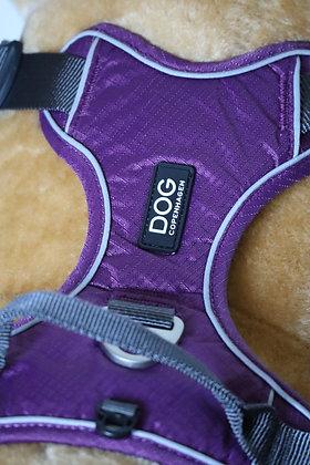 Harnais de randonnée Dog Copenhagen XL