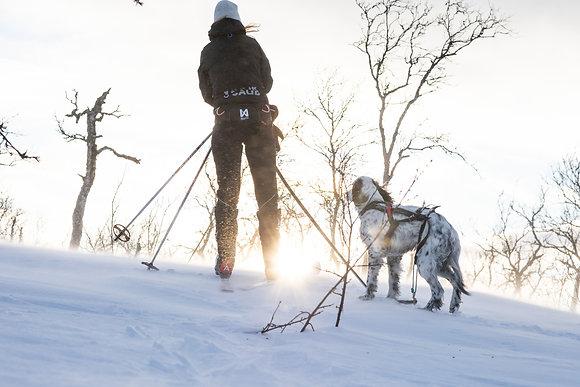 Baudrier ski-joëring