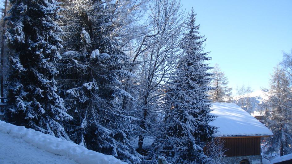 LC GEN View from terrace.jpg