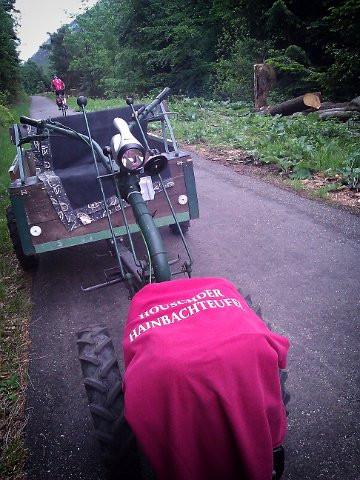 2012 Ein Hainbachteufel im Schwarzwald
