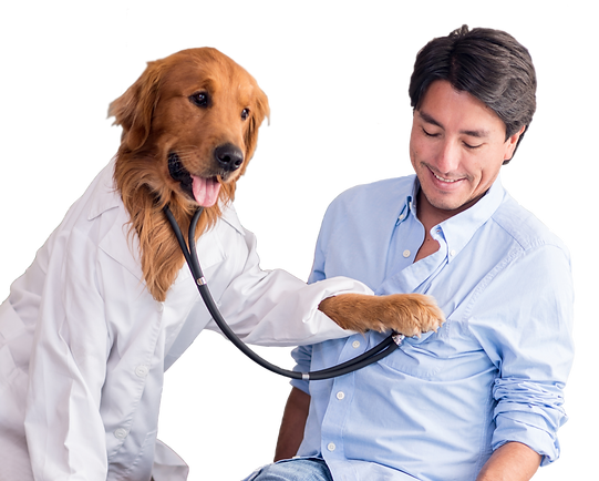 Dog_as_Doctor.png
