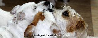 MeetingOfTheMIinds.jpg
