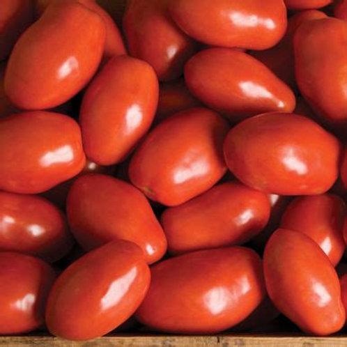 Tomato, Paisano Roma