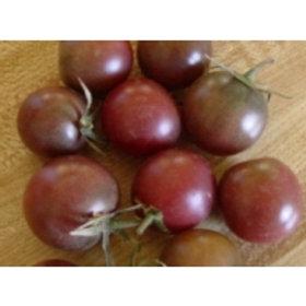 Mewaldt - Tomato Black Cherry