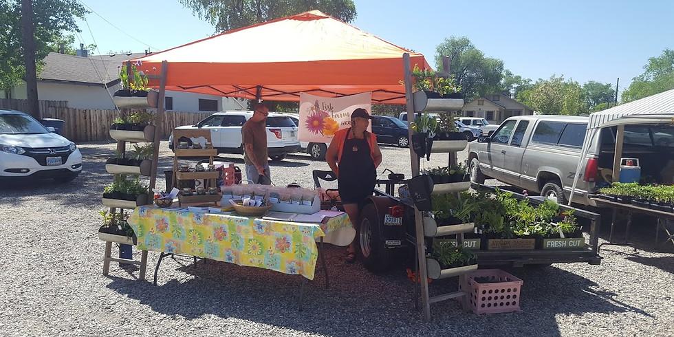 Fallon Food Hub Seedling Sale