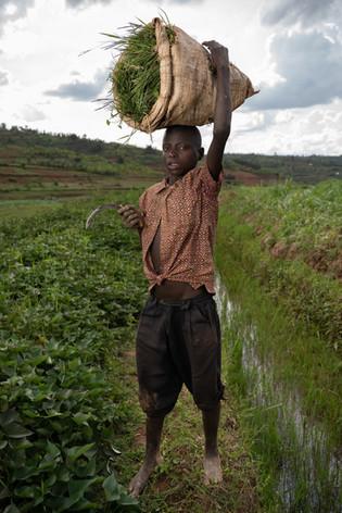 Rwanda_childlabour_Wohlfahrt-37.jpg