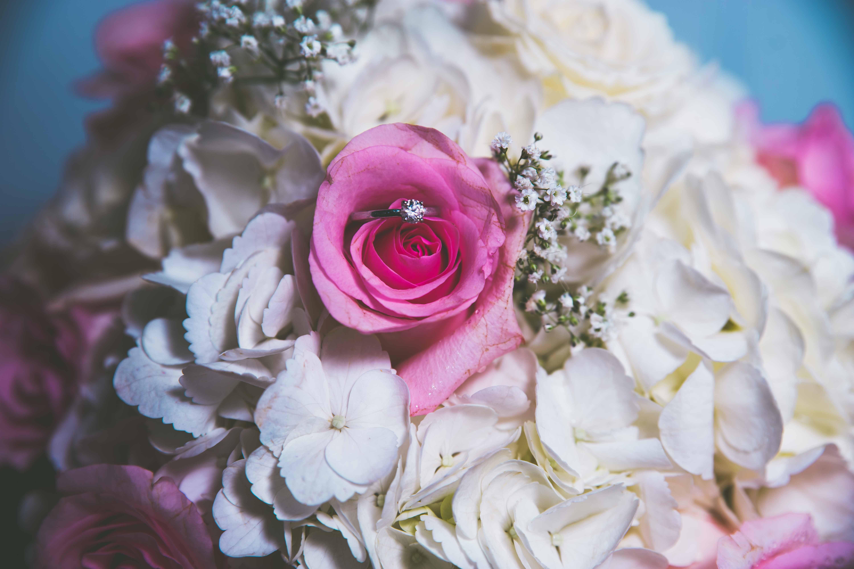 Wedding - Platinum Package ($$$)