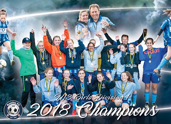 U13 Girls 2018 Champions - 18in x 6in print only