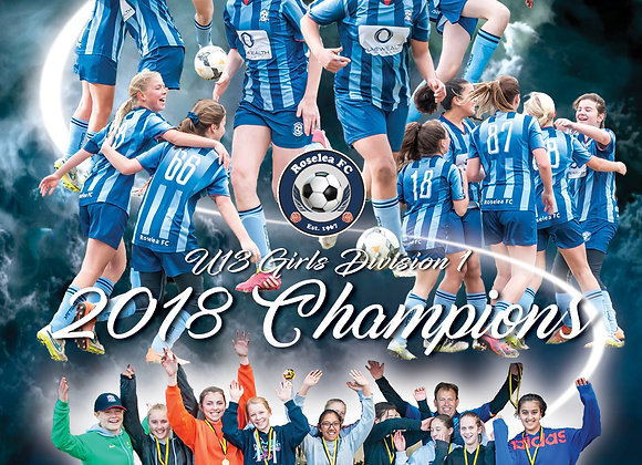 U13 Girls 2018 Champions - 8in x 12in print only