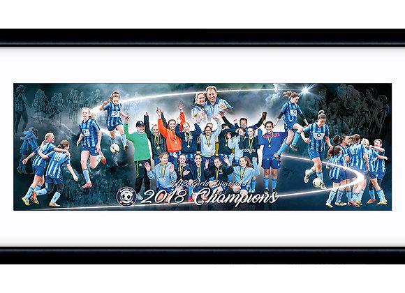 U13 Girls Champions 18in x 6in framed print