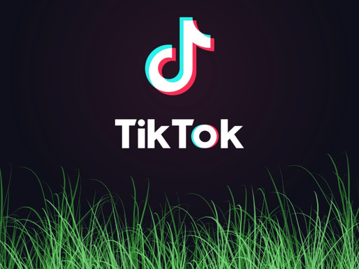 Tik Tok moved into Facebook's backyard and the grass may look greener for its employees
