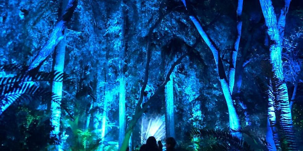KCRW Presents: Enchanted at Descanso Gardens