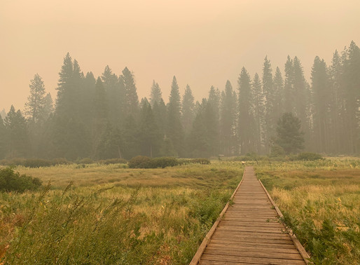 Kings Canyon National Park & Yosemite National Park Welcome Back Visitors With Improved Air Quality