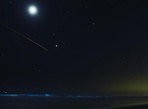 Southern California's Glow-in-the-Dark Bioluminescent Waves Light Up Solana Beach - San Diego